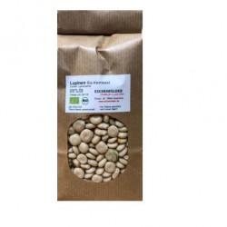 Weiße Süßlupine Bio-Keimsaat 500 g